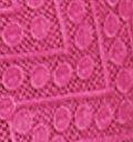 Raspberry(A06060)